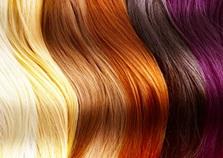 Vign_cheveux couleur-poux_ws1004335193