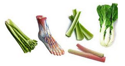 astuces de grand mere celeri