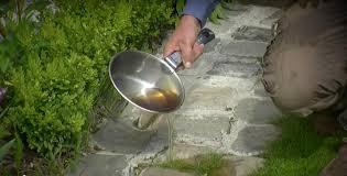 Si vous voulez vous épargner la corvée d_arrachage des herbes que vous jugez disgracieuses dans vos allées ou entre vos dalles, répandez dessus l_eau de cuisson bouillante de vos